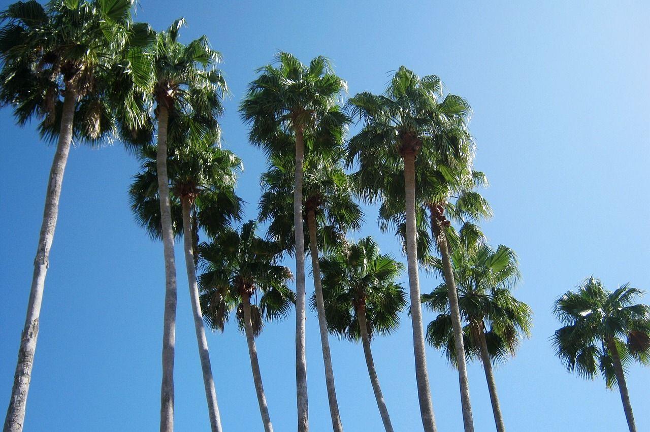 Miami Floridalugares turísticos