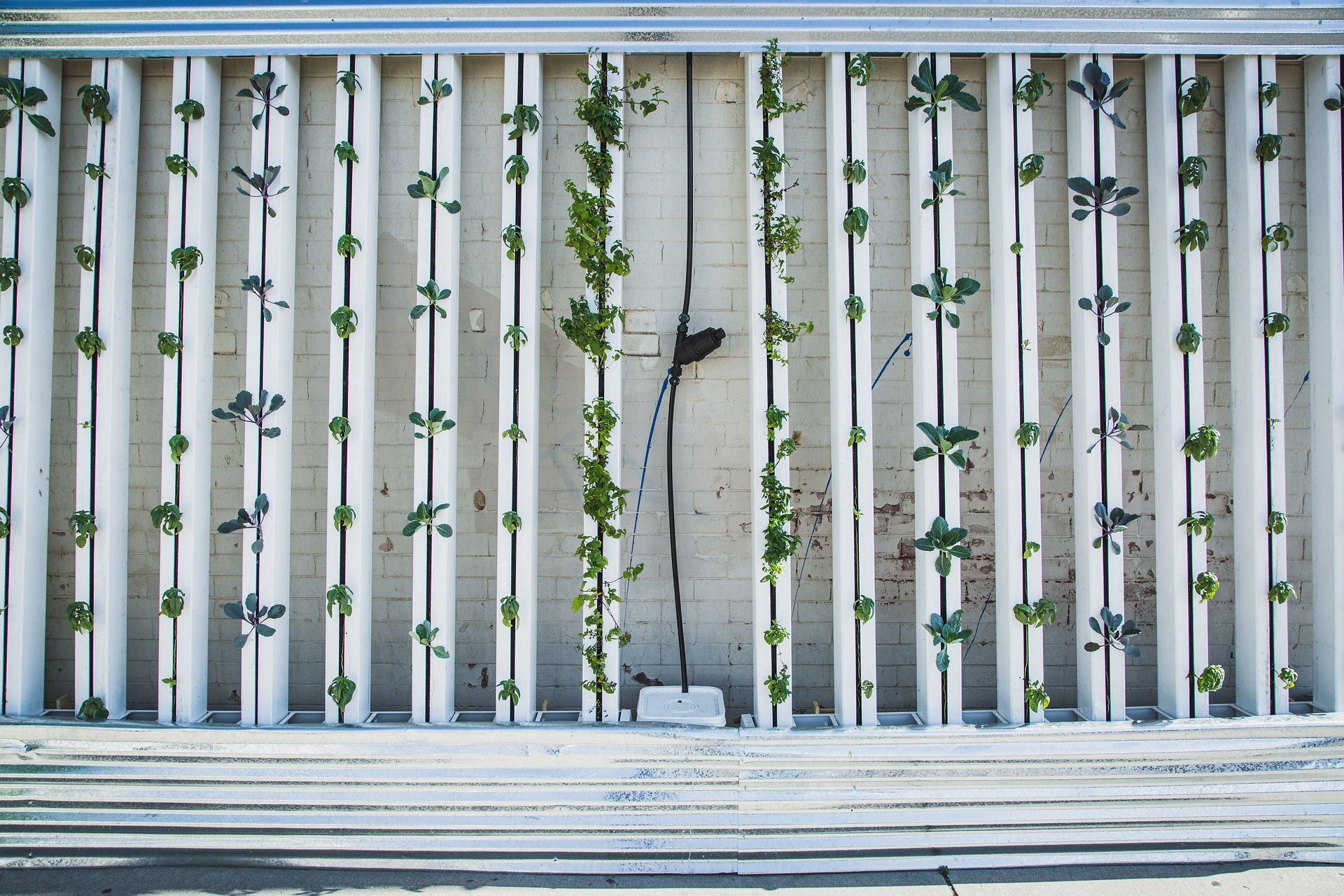 Remodelación de exteriores con naturalidad